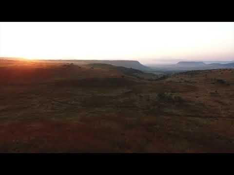 Bosveld Afrika - Frans van Zyl