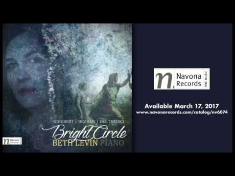 Beth Levin - BRIGHT CIRCLE