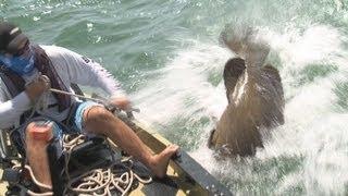 Fish Big Fish - Amazing Hand Fishing Fish Catches - Biggest Fish Catch - Mega Fish! Fisherman Videos