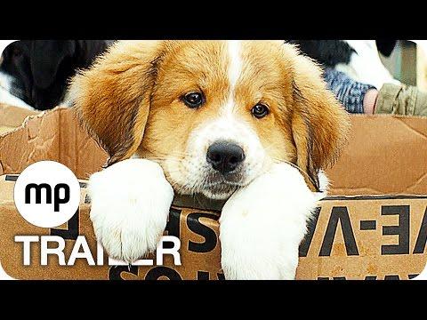WOLFHOUND   Offizieller deutscher Trailer   Jetzt als Blu-ray 3D! von YouTube · Dauer:  1 Minuten 58 Sekunden