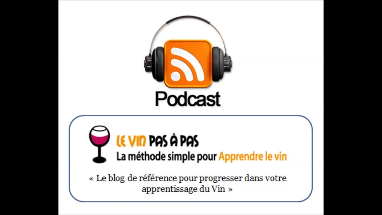 Bien-aimé 3 notions techniques pour mieux comprendre la fabrication du vin  JH35
