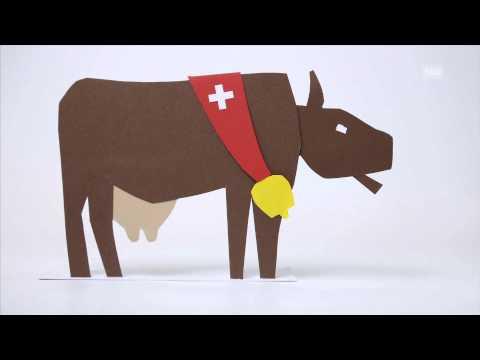 Как работает швейцарский