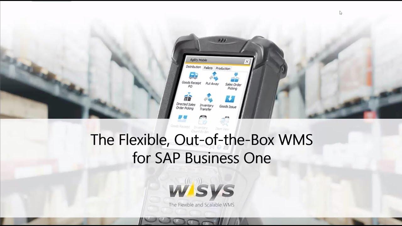 WiSys Webinars for SAP Business One