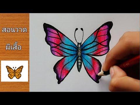 สอนวาดรูประบายสี ผีเสื้อ 🦋สวยๆ | How To Draw Butterfly