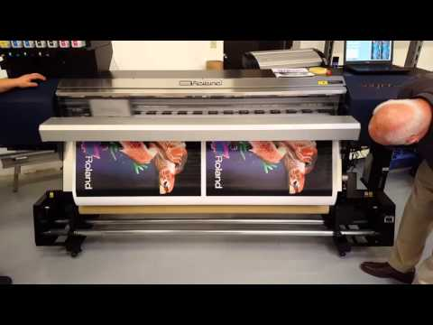 Hasco Graphics   Roland EJ Printer