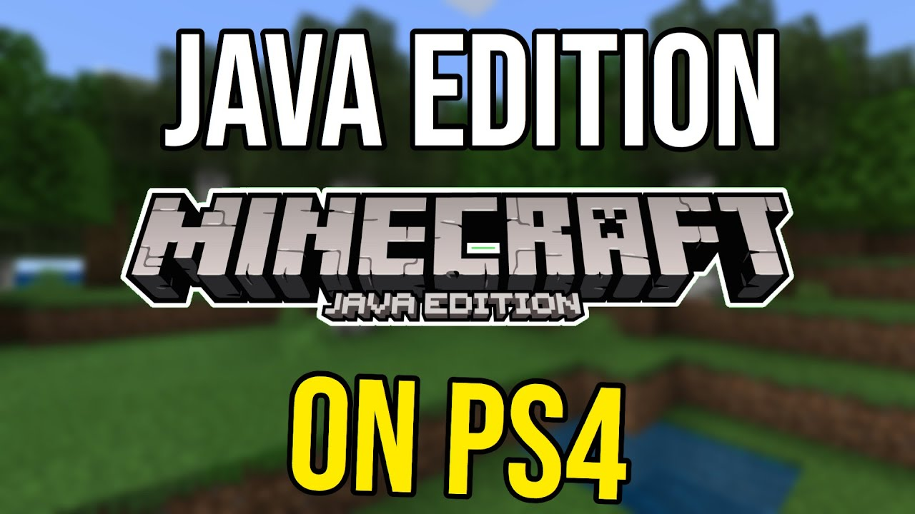 Minecraft PS11 Java Edition - Could It Happen?