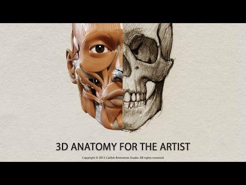 3D Anatomy for the Artist - App Tutorial