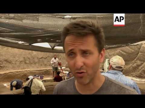 Archaeological dig sheds light on origins of Philistines