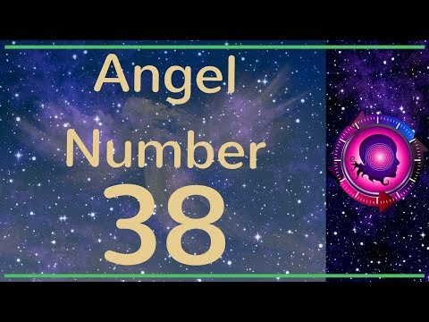 number 38 # 24