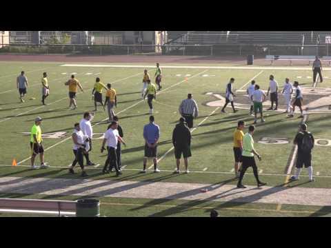 2016 CFL playoffs Yellow vs White