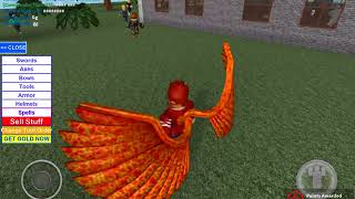 Roblox session with the new wings I got for my Birthday.