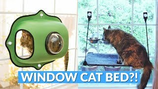Window Mounted Cat Bed Gives Your Kitty a View While They Lounge