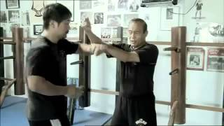 Tracing the Legacy - From Ip Man to Bruce Lee