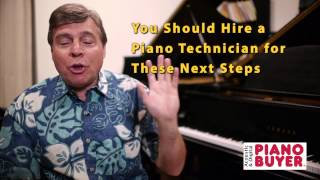 Piano Buyer: How to Find the Serial Number of Your Piano