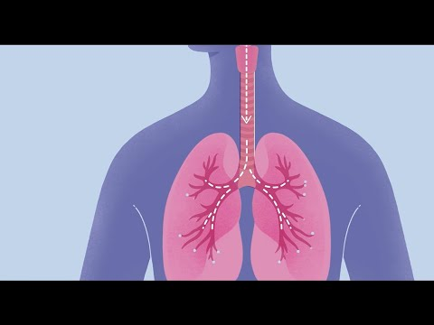Download How COVID-19 Affects Your Lungs