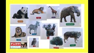 20 Wild Animals for Children | Sound | Part 1 | Preschool Learning | FlippiWhippi