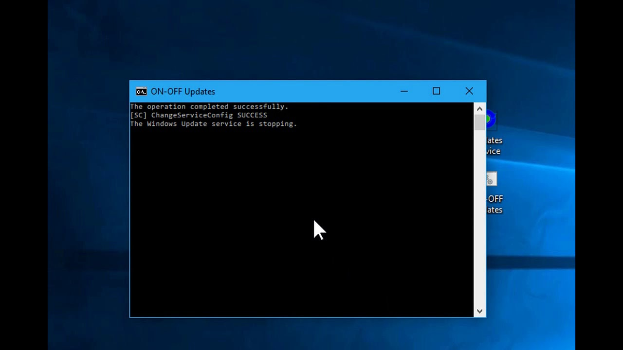 disable windows 10 home update service