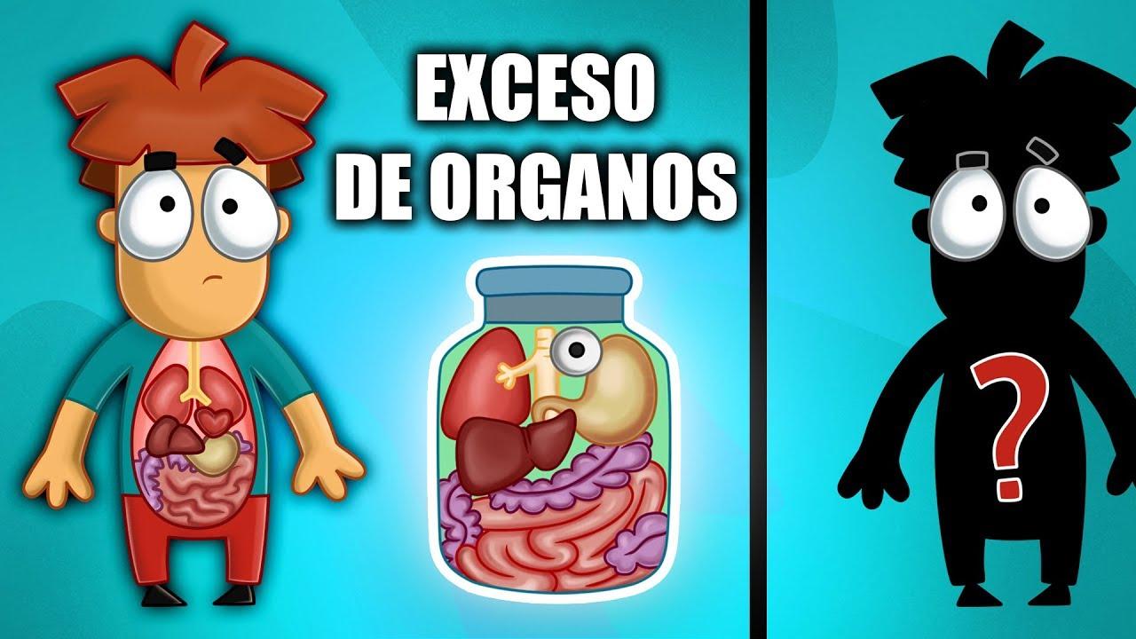 Le sucederá a tu cuerpo si eliminas estos 5 órganos.