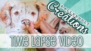 COLOUR SPLASH Toller & Brittany Dog | Time Lapse | Kallerhult Creations