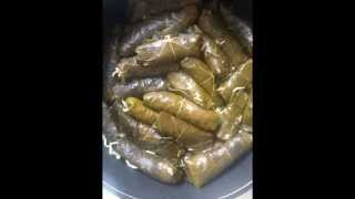 Dolma, Stuffed vine leaves and stuffed onion. middle eastern style
