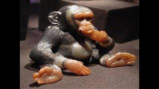 Удивительные фигурки животных из камня Герда Дрехера (Gerd Dreher)