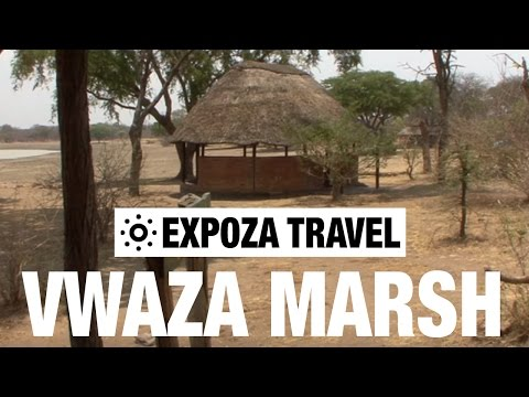 Vwaza Marsh (Malawi) Vacation Travel Video Guide