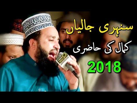 Khalid Hasnain Khalid ( New Naats 2018 ) Sunehri Jaliyan By Faroogh E Naat & Qadri Attari Sound