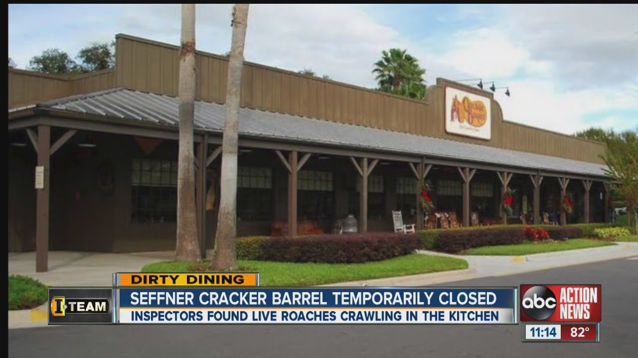 Dirty Dining 50 Live Roaches Crawling Around Cracker Barrel S Kitchen Temporarily Shuts It Down Youtube