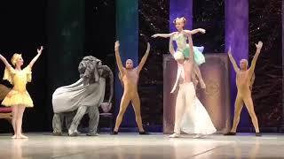 """Балет  """"Карнавал животных"""",  муз.К.Сен-Санс,  финал"""