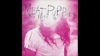 Watch Meat Puppets Violet Eyes video