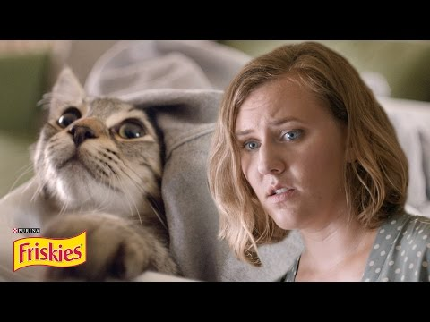 Thumbnail: Life With A Cat // Presented By BuzzFeed & Friskies