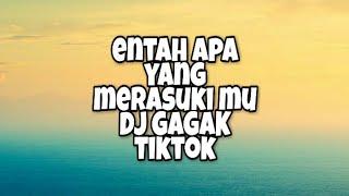 Download lagu Entah Apa Yang Merasuki Mu DJ Gagak Tiktok (Lirik)