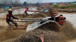 Гонки на плугах – развлечение фермеров в Таиланде