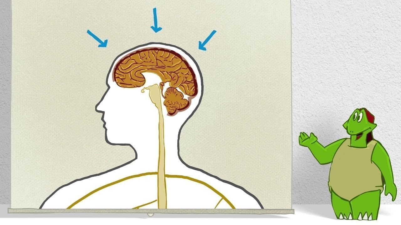 Osteochondroza tratamentului de exacerbare a coloanei vertebrale lombare