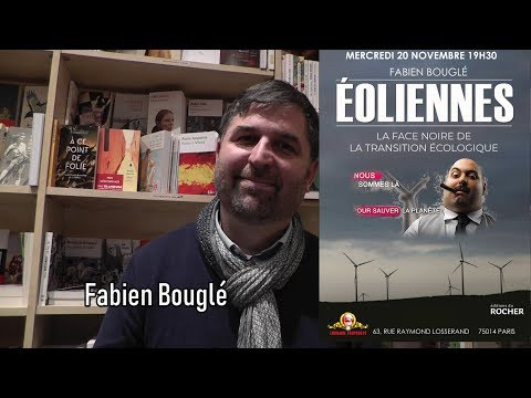 Éoliennes : Le Casse Du Siècle - Fabien Bouglé