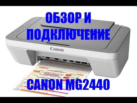 МФУ Canon Pixma MG2440. Обзор и подключение