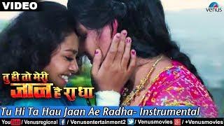 Tu Hi Ta Hau Jaan Ae Radha- Instrumental (Tu Hi To Meri Jaan Hain Radha)