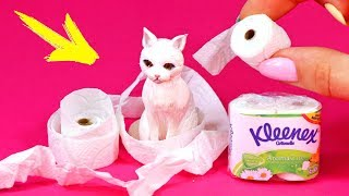 видео туалетная бумага, приколы с туалетной бумагой, туалетная бумага заказать