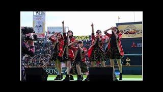 たこやきレインボーが11月25日(土)に阪神甲子園球場にて行われた<阪...