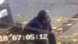 Смотреть видео Убийство в Москве попало в кадры. 20.10.2018 онлайн
