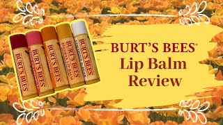 Burt's Bees Lip Balm review - Vlogmas 2018 Day 11