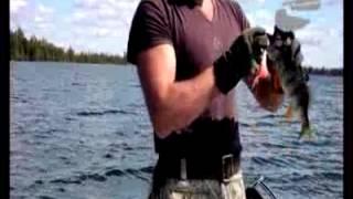видео Летняя рыбалка в Томской области на озере Лобазное
