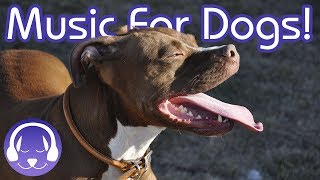 Relaxing Music for Dogs: 15 Hours of Soothing Music for Your Canine!