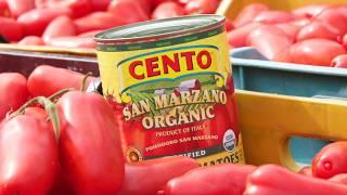 Gambar cover Cento Certified San Marzano Tomatoes