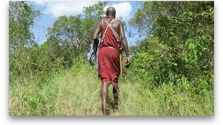AFRICAN SAFARI   MAASAI MARA, KENYA Part 1