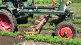 Maschinendemo: Unkrautregulierung im Biogemüsebau (Hochdeutsch)