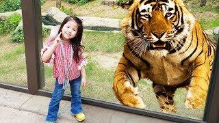 엄청 큰 호랑이를 만났어요!! 서은이의 에버랜드 사파리 동물원 견학 호랑이 팬다 원숭이 Tiger at Zoo