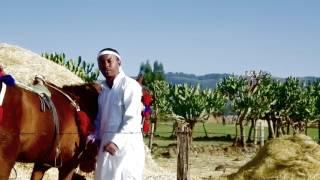 Leule Alemu - Moa Anbesa ሞዓ አንበሳ (Amharic)
