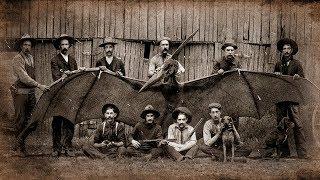 Птеродактиль в 19 веке