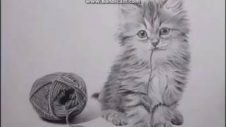 Кошка.Рисунок карандашом.